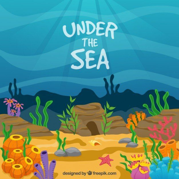 Year 7 School Show 'Under the Sea'