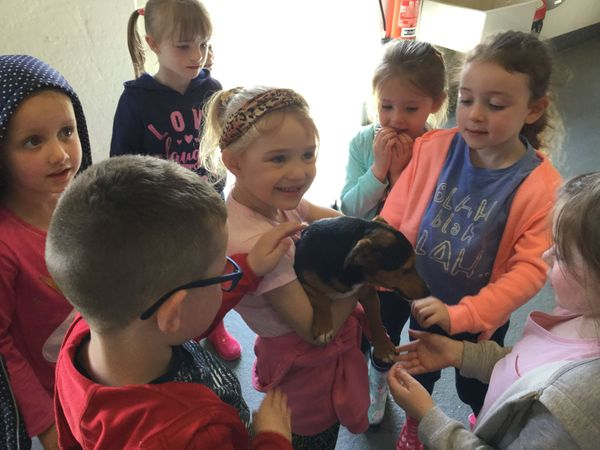 Year 1 Sperrin Fun Farm