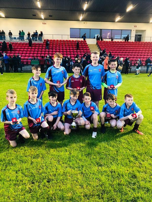 Boys' Gaelic Team win the County Final