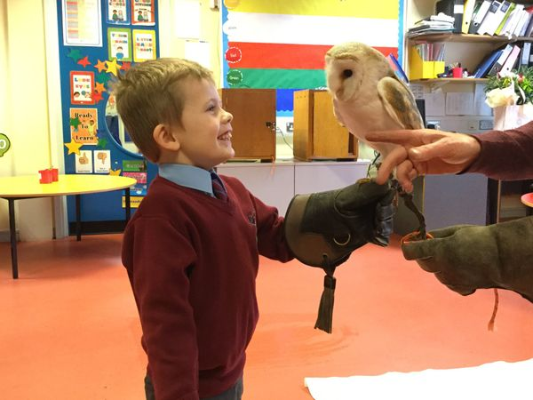 Barney the Owl visits Year 1.